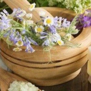 Трави для шкіри обличчя: «бабусині» секрети краси